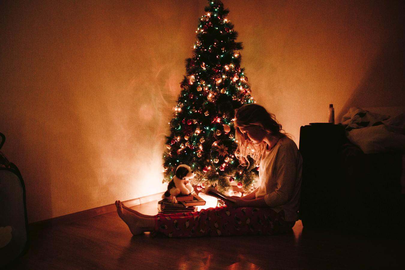 Tips for revising for your mock exams over the Christmas holidays